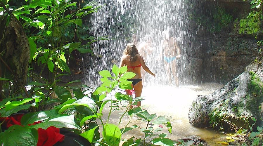 waterfall excursions martinique