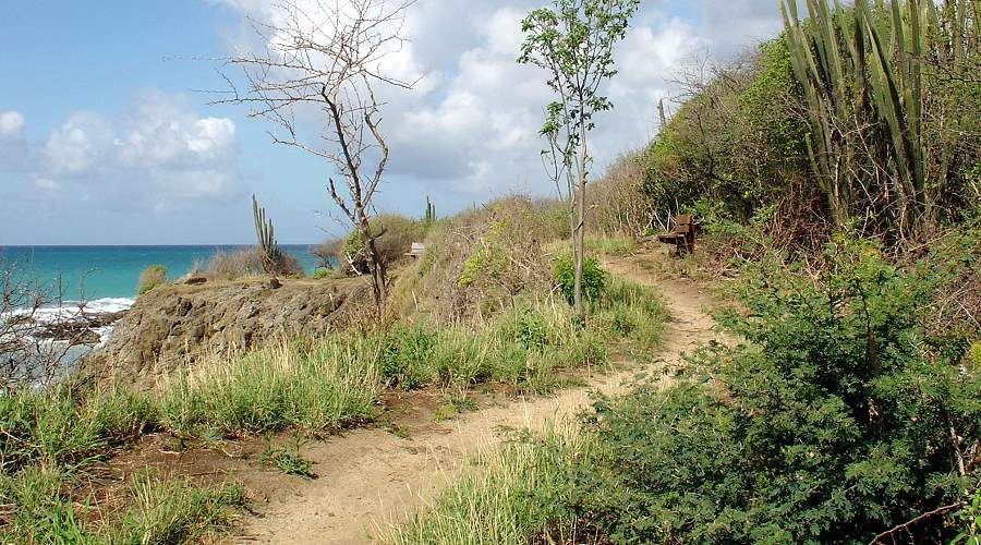 trekking along the southern beaches in Martinique