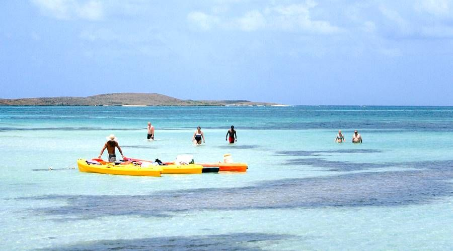 Oasis Motor Company >> kayak in Martinique with Caraibe Coast Kayak - MartinicaOnline